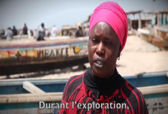 Exploitation durable au Sénégal