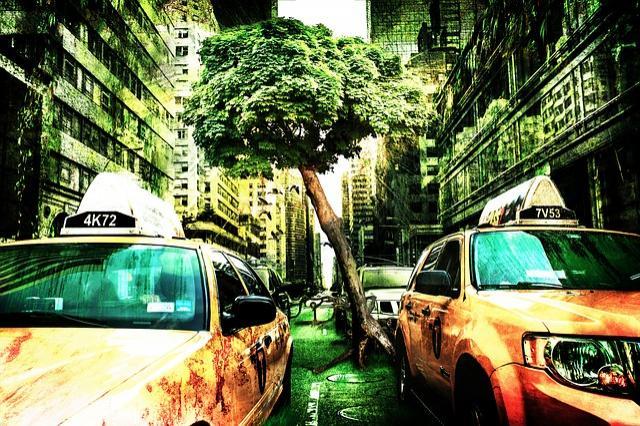 Transport et environnement